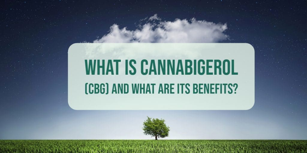 What is Cannabigerol (CBG) And What Are Its Benefits?