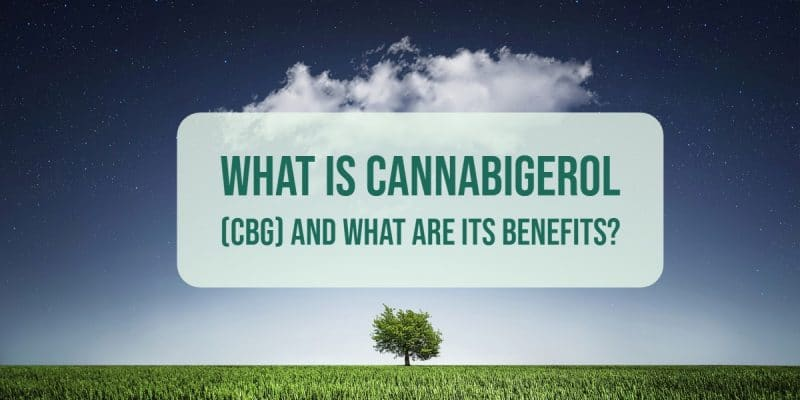 What is Cannabigerol (CBG)