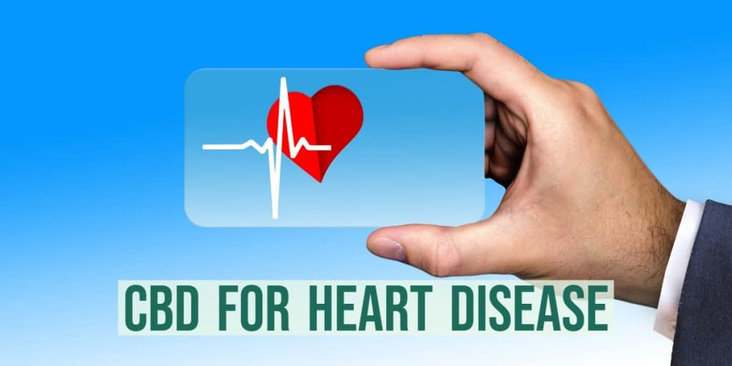 CBD For Heart Disease | The Multifarious Benefits Of CBD