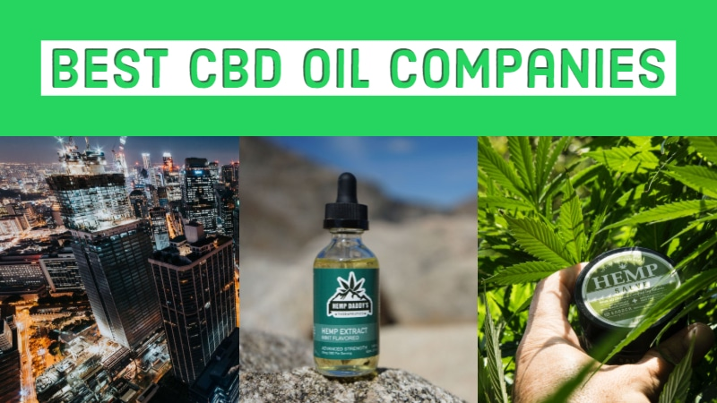 Best CBD Oil Product Companies In 2019